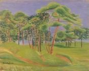 代々木の原